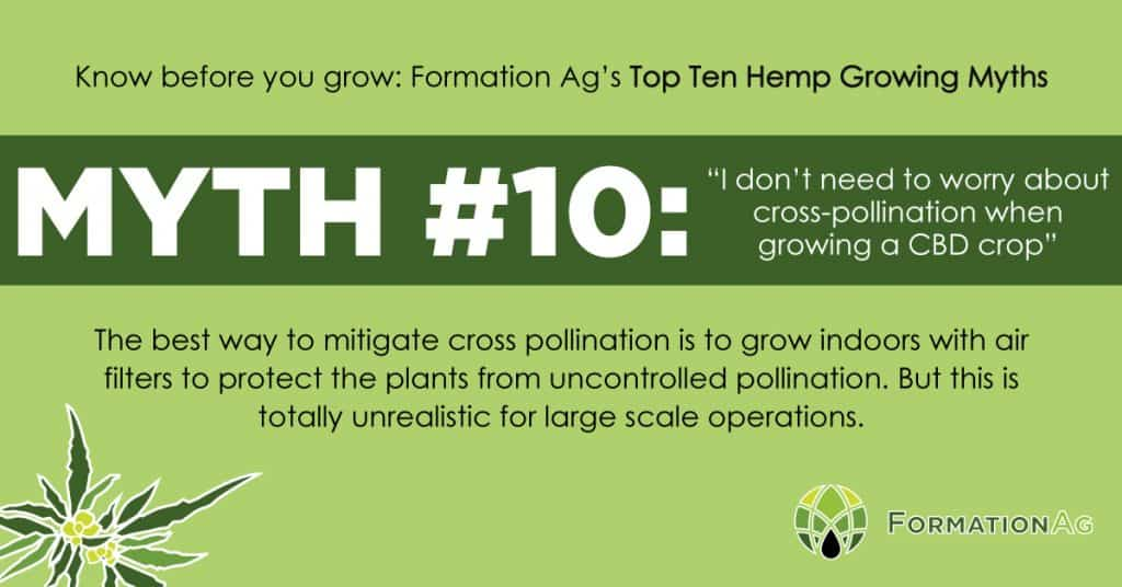 "Myth #10: ""I don't need to be worried about cross-pollination when growing a CBD crop"""